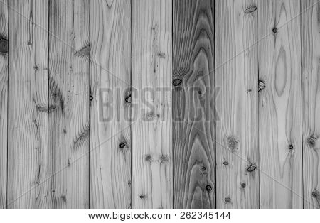 Black And White Wood Texture Background. Dark Wood Plank Abstract Background. Empty Wooden Wall. Bla