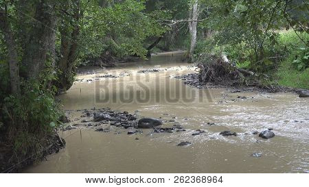 Mountain River On Raining Day, Spring Brook, Creek Stones, Rocks, Nature View
