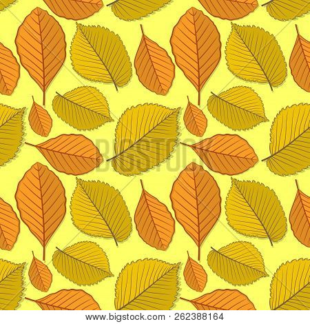 Seamless Pattern With Elm And Beech Autumn Leaves. Vector Illustration.