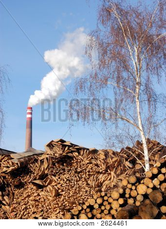 Wood And Bimass Plant