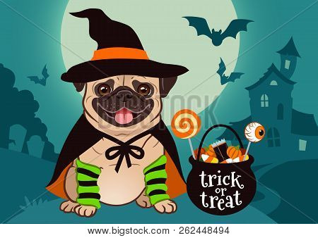 Halloween Pug Dog Dressed As Witch With Hat, Cape, Cauldron With Candy, Against Spooky Scene With Fu