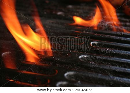 Flame from the gas grill