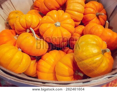 Close Up Photo Of A Wooden Basket Filled With Pumpkins