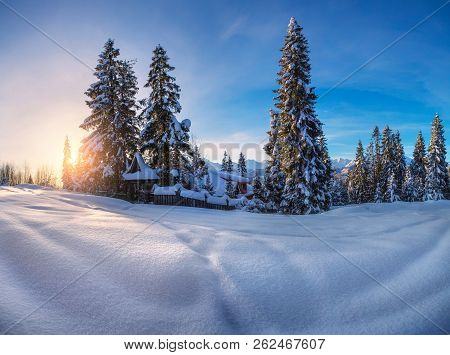Winter Landscape. Winter Nature. Winter Mountains. Pine Trees Covered By Snow On Snowy Valley At Sun