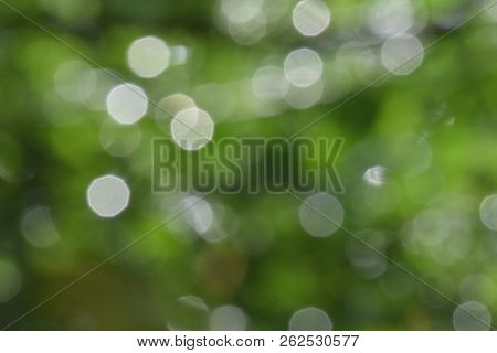 Background And Bokeh. The Images Have Beautiful Lighting And Circular Blurred Images Suitable For Th