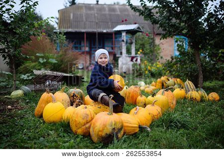 Boy Sitting On A Pile Of Pumpkins And Smiling