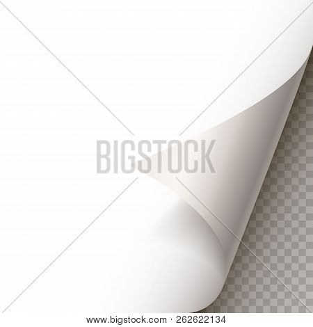 Page Curl With Shadow On Blank Sheet Of Paper. White Paper Sticker. Element For Advertising And Prom