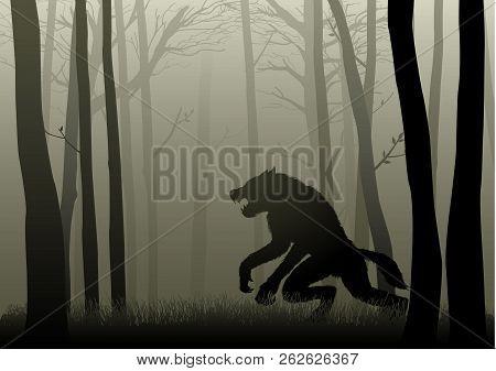 A Werewolf Lurking In The Dark Woods