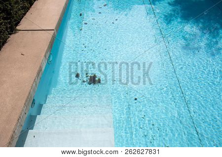 Dirty Swimming Pool Which Need To Be Cleaned Close-up