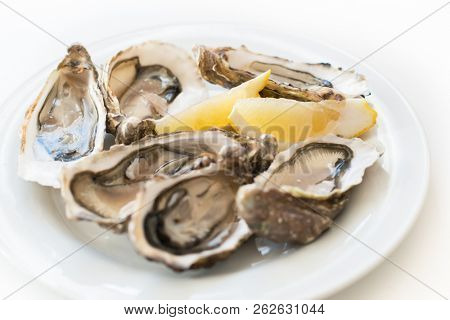 Fresh oysters. Raw fresh oysters on white round plate, image isolated, with soft focus. Restaurant delicacy. Saltwater oysters, soft focus