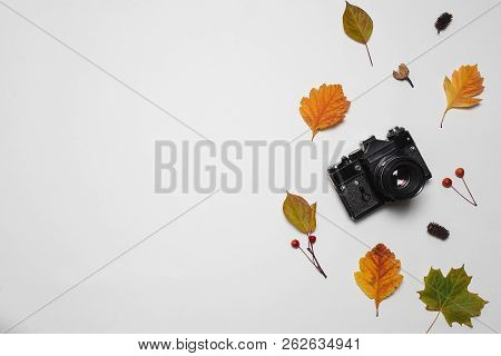Vintage Retro Camera And Autumn Fall Leaves With Red Berries And Maple Leaf. Flay Lay, Top View. Cop