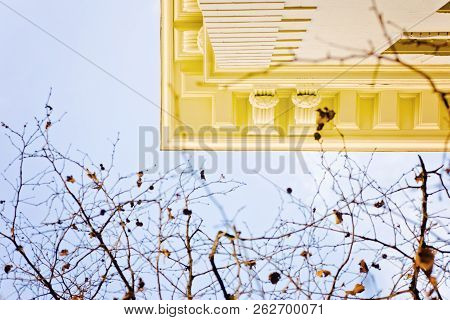 Looking Up At View Of Corner Of A Building And Fall Leaves On Trees, With Blue Sky In The Background