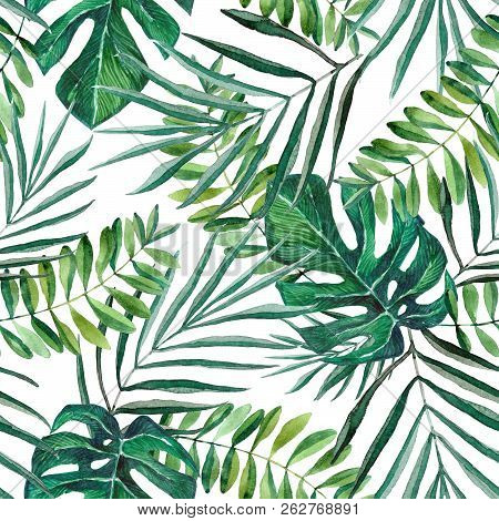 Hand Painted Watercolor Palm And Monstera Leaves Seamless Pattern On White Background. Tropical Back