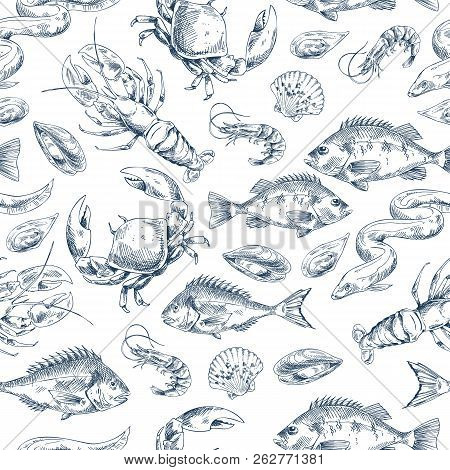 Crawfish And Fishes Sketch Pattern. Shrimp Crayfish, Bass And Bream Species Types. Marine Dwellers M