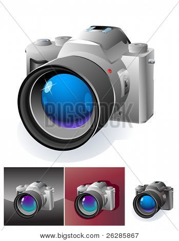 web botton with professional slr camera