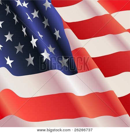 American flag, detailed vector