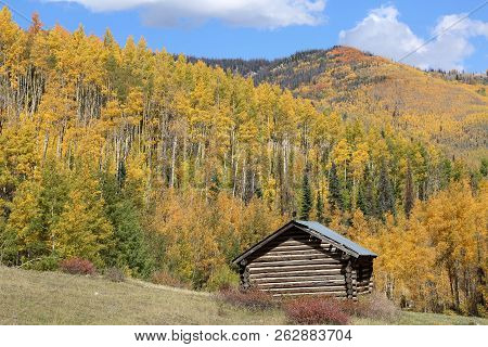 Fall In Imogene Pass In Ouray, Colorado
