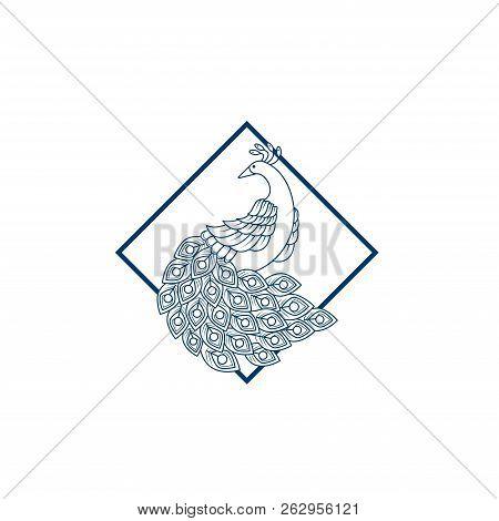 Peacock. Peacock Vector. Peacock icon Vector. Peacock symbol. Peacock Logo vector. Peacock sign. Peacock concept vector. Peacock Logo design. Peacock icon logo vector illustration isolated on white background.