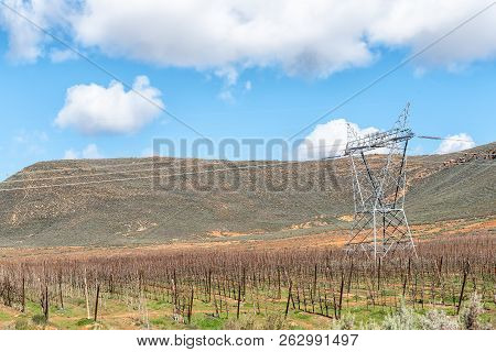 Farm Landscape On Road R46 Near Ceres In The Western Cape Province. Espalier Fruit Trees And Electri