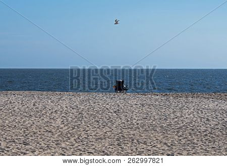 Alone On The Beach Contemplating Life. Individual Sitting On The Beach With A Lone Gull Flying Overh