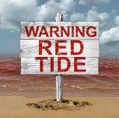 Red tide beach warning sign as hazardous natural toxin in the ocean or sea as a concept for deadly natural toxic algae in a 3D illustration style. poster