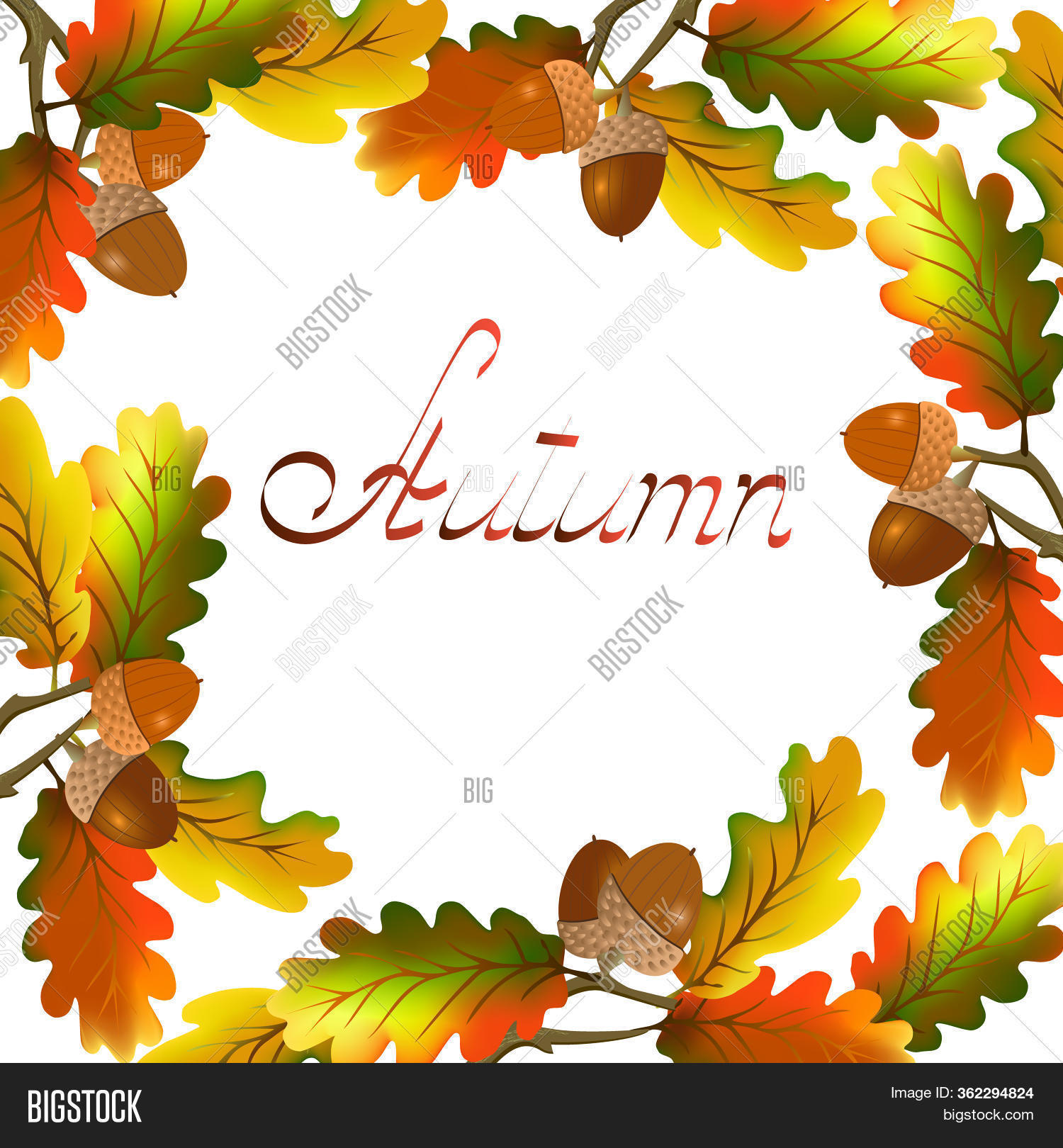 Acorn clipart color, Acorn color Transparent FREE for download on  WebStockReview 2020