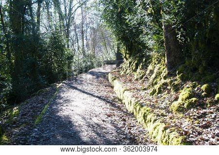Walking Path Near Duingt, Savoy
