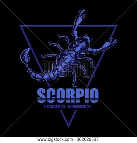 Scorpio Zodiac Vector Illustration For Your Company Or Brand