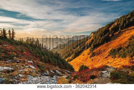 Beautiful Autumn Landscape With Mountains At Sunset. Yellow Trees On Green Mountain Hills Illuminate