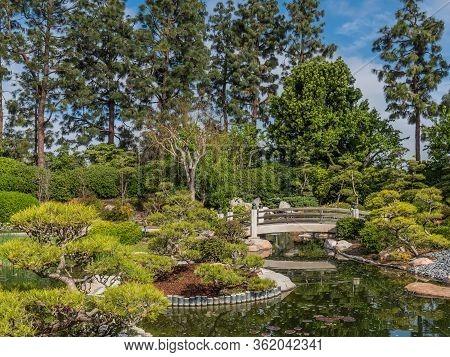 Usa Gardens, Parks Bridges, Pond Earl Burns, Miller Japanese Garden, Long Beach Trees Shrubs.