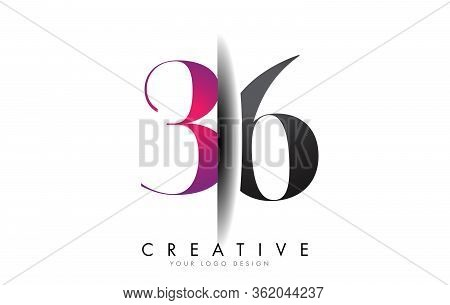36 3 6 Grey And Pink Number Logo With Creative Shadow Cut Vector Illustration Design