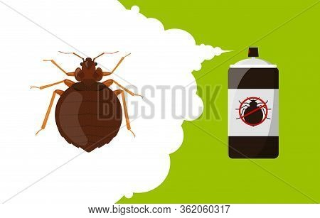 Bedbug Repellent Banner Concept. Insect Repellent Aerosol. Pest, Insect And Bug Control Spray Bottle