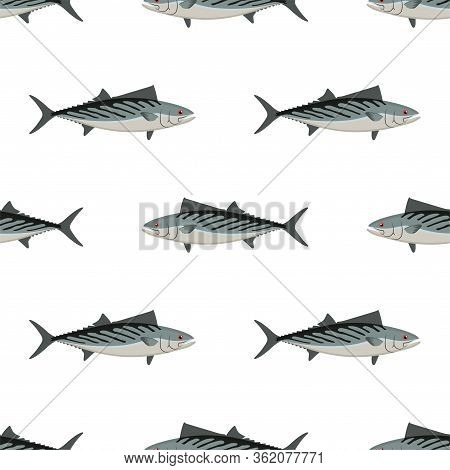 Bonito. Fish. Colored Vector Patterns. Marine Life, Fishing, Oceanology. Isolated Pattern For Notebo