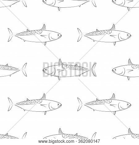 Tuna Fish. Mackerel Tuna. Colored Vector Patterns. Marine Life, Fishing, Oceanology. Isolated Patter
