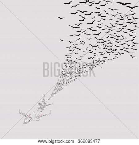 Flock Of Migratory Birds In The Form Of An Airplane Silhouette