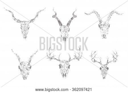 Vector Set Of Silhouettes Skulls Of Horned Animals: Antelope, Deer And Goats On White Background. Gr