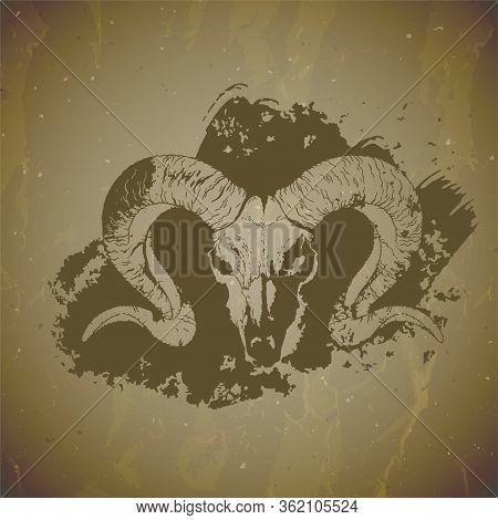 Vector Illustration Of Hand Drawn Skull Wild Ram With Grunge Elements On Vintage Background. Sketch