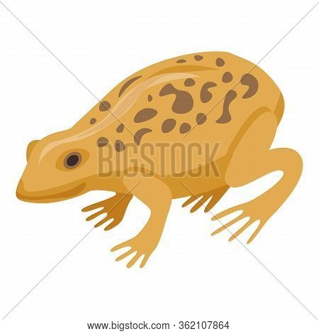 Ground Frog Icon. Isometric Of Ground Frog Vector Icon For Web Design Isolated On White Background