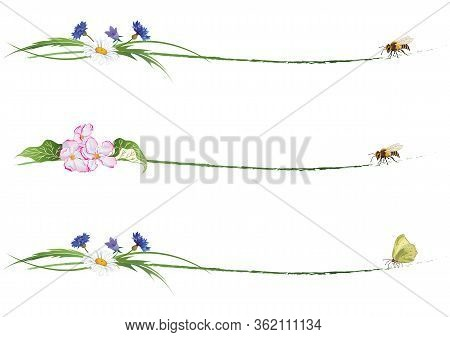 Set Of Floral Dividers With Bee, Butterfly, Flowers Of Apple And Wild Flowers