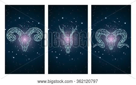 Vector Set Of Three Illustrations With Silhouettes Skulls Roe Deer And Rams On Blue And Pink Starry