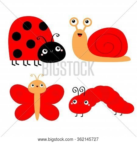 Red Insect Icon Set Vector Photo Free Trial Bigstock