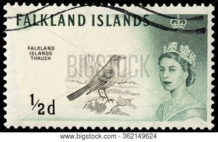 Luga, Russia - October 20, 2019: A Stamp Printed By Falkland Islands Shows Austral Thrush (turdus Fa