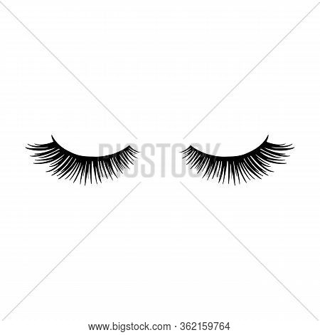 Long Black Lashes Vector Illustration. Beautiful Eyelashes Isolated On White