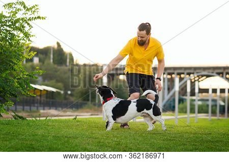 Handsome Hipster Man Walking Her Dog And Playing Together. Friendship Loving Bond Between Owner And