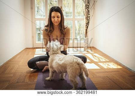 Young Woman Is Relaxing With Her Sweetie Dog Pet During Corona Virus Pandemic Doing Yoga Meditation
