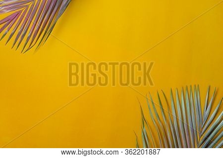 Table Top View Aerial Image Of Summer Season Holiday Background Concept.flat Lay Coconut Or Palm Lea