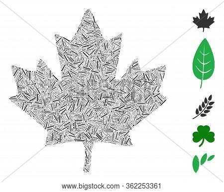 Linear Collage Maple Leaf Icon Composed Of Straight Items In Various Sizes And Color Hues. Vector Li