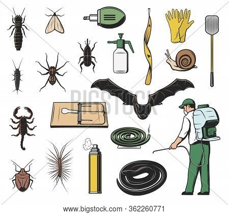 Pest Control Exterminator, Insect, Insecticide And Rodent Vector Icons. Scorpion, Weevil Or Snout Be
