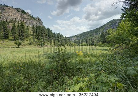 HDR of Black Hills