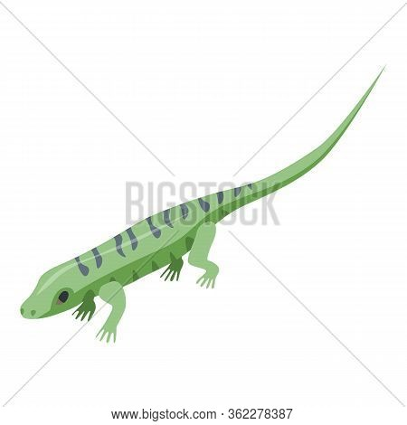 Water Lizard Icon. Isometric Of Water Lizard Vector Icon For Web Design Isolated On White Background